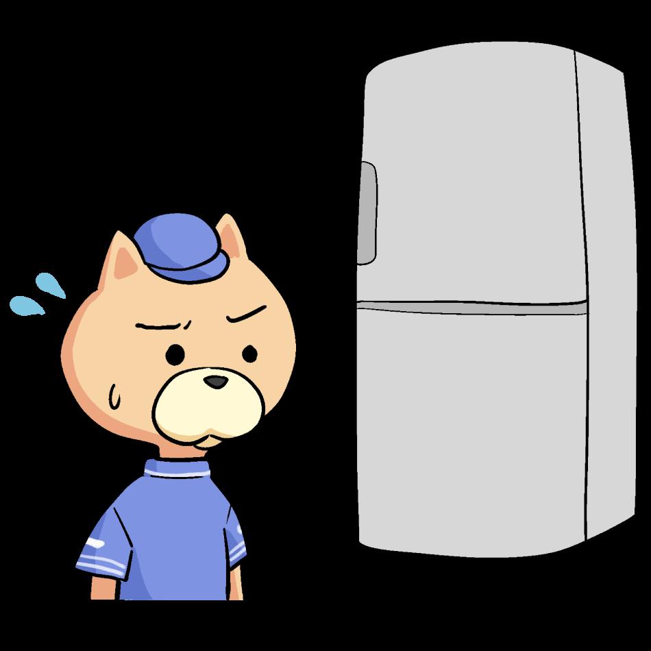 重い荷物にビビる猫