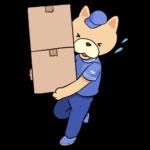 引越し作業をがんばる猫